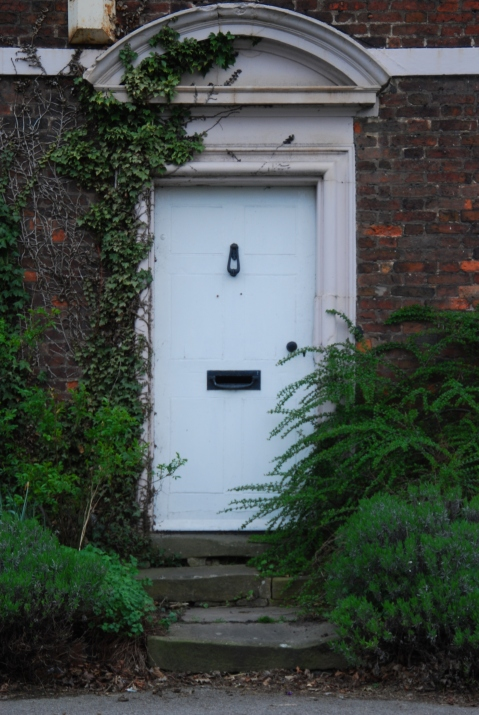 Overgrowing front door