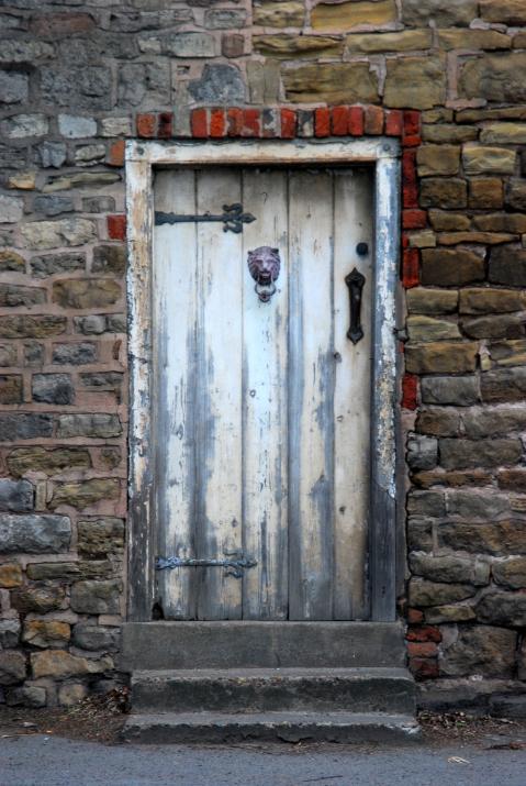 Lion knocker door