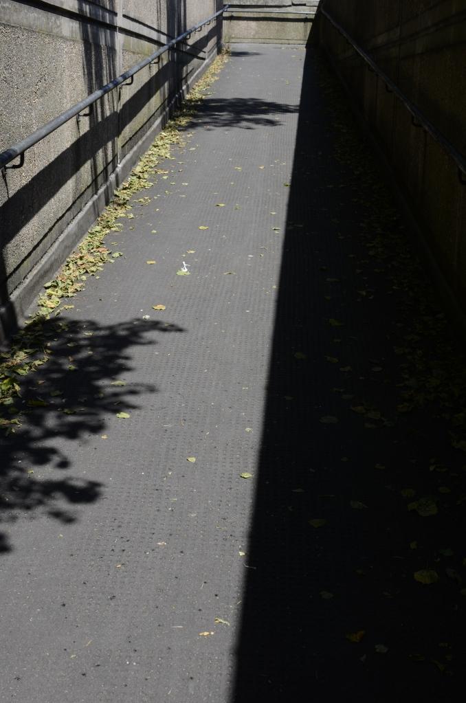 shadow walkway